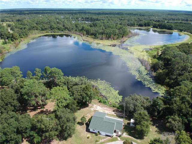 15199 SE 168TH Court, Weirsdale, FL 32195 (MLS #G5016301) :: Premium Properties Real Estate Services