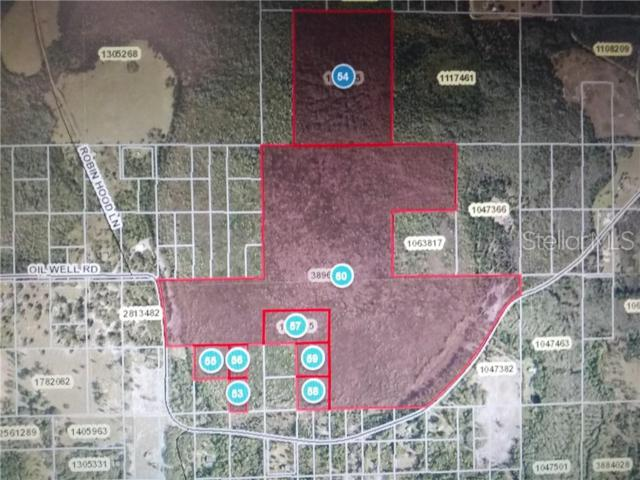 Oil Well Road, Clermont, FL 34714 (MLS #G5016693) :: RE/MAX Realtec Group
