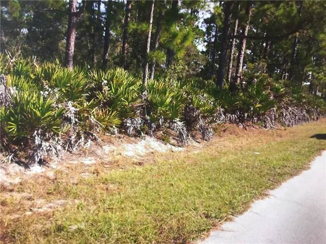4320 Cooper Drive, Sebring, FL 33872 (MLS #G5016807) :: Premier Home Experts