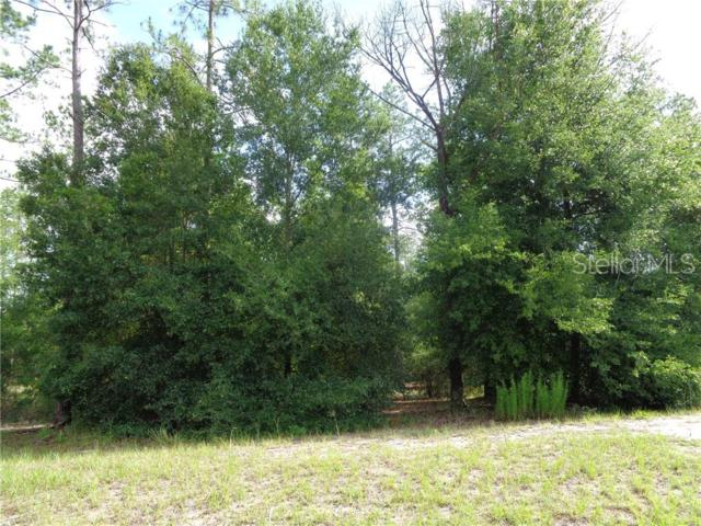 35703 High Pines Drive, Eustis, FL 32736 (MLS #G5016934) :: The Duncan Duo Team