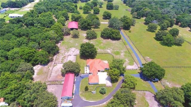 17321 SE 150TH AVENUE Road, Weirsdale, FL 32195 (MLS #G5018270) :: Armel Real Estate