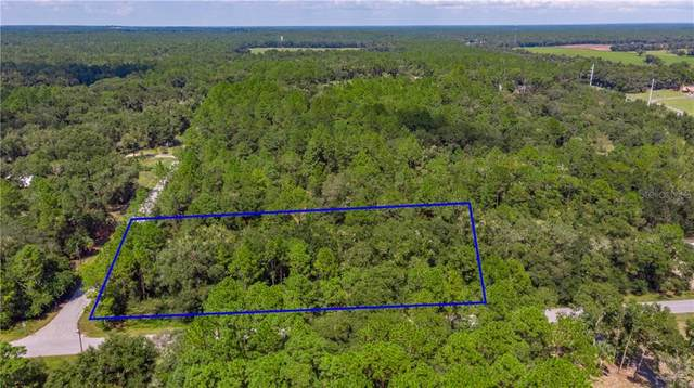 SW 75TH Street Lot 12, Dunnellon, FL 34431 (MLS #G5020618) :: Griffin Group