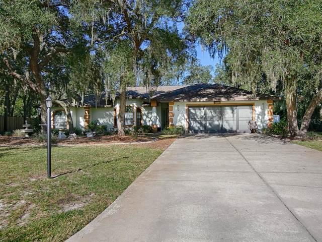 35247 Haines Creek Road, Leesburg, FL 34788 (MLS #G5021875) :: Team Bohannon Keller Williams, Tampa Properties