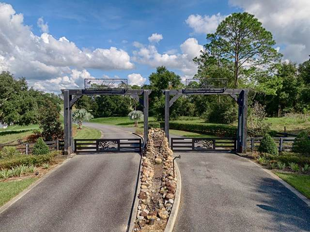 41509 Saddle Ridge Lane, Weirsdale, FL 32195 (MLS #G5021957) :: GO Realty