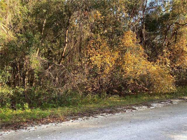 Medicine Stone Drive, Webster, FL 33597 (MLS #G5023283) :: The Duncan Duo Team
