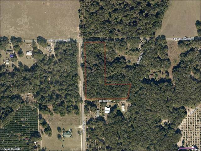 16170 SE 137TH Terrace, Weirsdale, FL 32195 (MLS #G5023878) :: The Duncan Duo Team