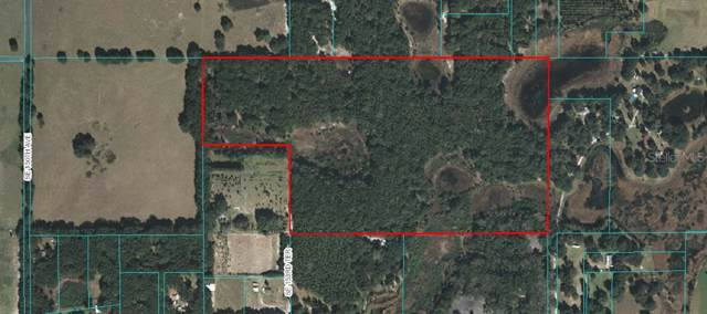 TBD SE 153RD Terrace, Weirsdale, FL 32195 (MLS #G5024462) :: Rabell Realty Group