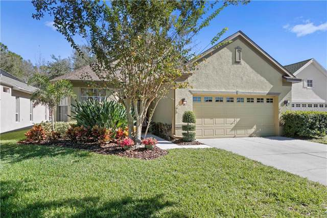 10405 Edgefield Place, Tampa, FL 33626 (MLS #G5024910) :: GO Realty
