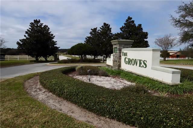LOT 19 Eagle Run, Groveland, FL 34736 (MLS #G5025111) :: Cartwright Realty