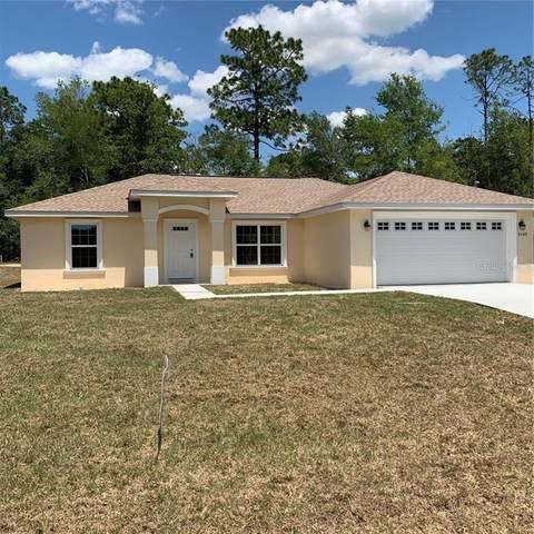9549 N Pineview Way, Citrus Springs, FL 34434 (MLS #G5028795) :: The Duncan Duo Team
