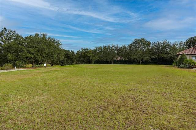 26349 San Gabriel, Howey in the Hills, FL 34737 (MLS #G5029245) :: Sarasota Home Specialists
