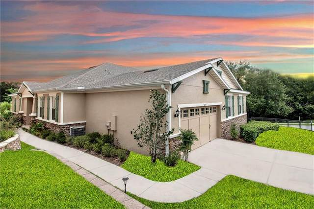 30019 Willow Trace, Mount Dora, FL 32757 (MLS #G5031171) :: Zarghami Group