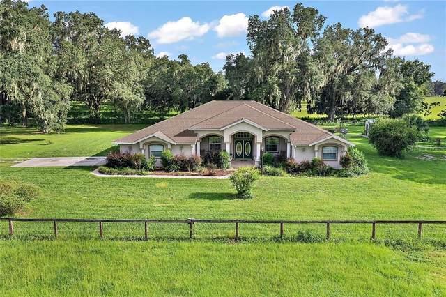 2241 SE 24TH Trail, Sumterville, FL 33585 (MLS #G5032863) :: Everlane Realty