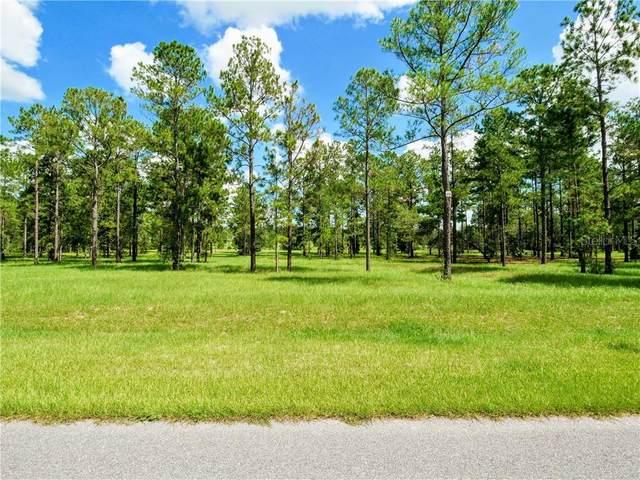 24031 Greenwood Crossing, Eustis, FL 32736 (MLS #G5033026) :: Bustamante Real Estate