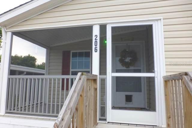 206 Paradise S, Leesburg, FL 34788 (MLS #G5033862) :: Rabell Realty Group