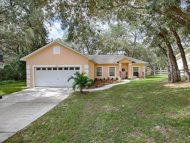 40229 Palm Street, Lady Lake, FL 32159 (MLS #G5035025) :: Visionary Properties Inc