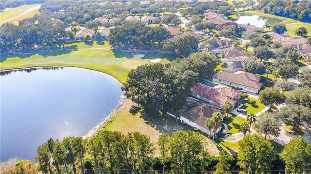 9901 Santa Barbara Court, Howey in the Hills, FL 34737 (MLS #G5036576) :: Zarghami Group