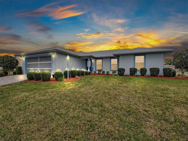 17501 SE 110TH Court, Summerfield, FL 34491 (MLS #G5037798) :: The Heidi Schrock Team