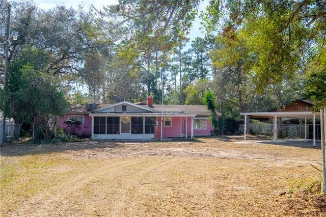 42331 Maggie Jones Road, Paisley, FL 32767 (MLS #G5038372) :: Vacasa Real Estate