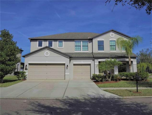 11522 Sand Stone Rock Drive, Riverview, FL 33569 (MLS #G5038473) :: The Duncan Duo Team