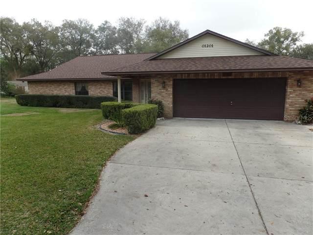 1201 Linmar Avenue, Fruitland Park, FL 34731 (MLS #G5038914) :: Griffin Group