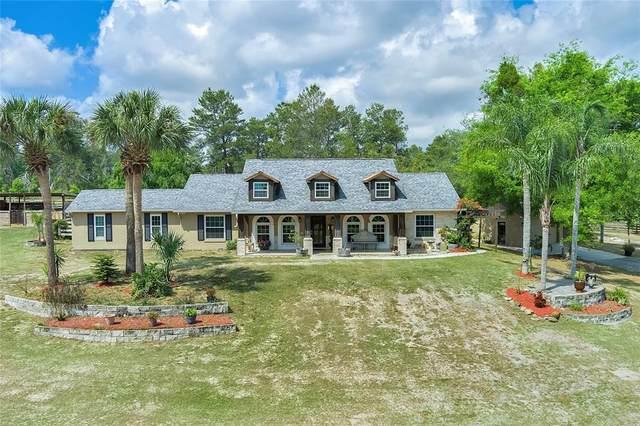 2400 Williams Road, Winter Garden, FL 34787 (MLS #G5040465) :: Vacasa Real Estate