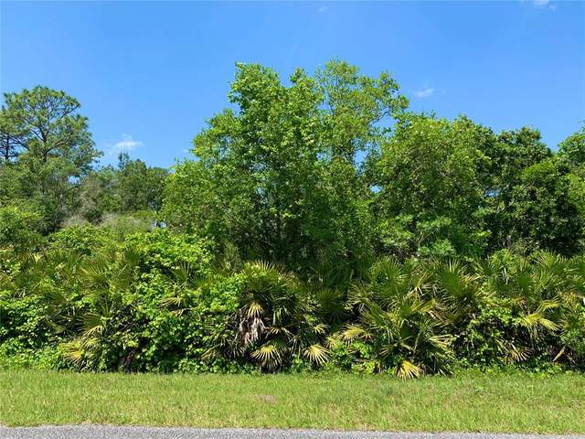 Lot 2 Tamarac Street, Eustis, FL 32736 (MLS #G5041017) :: Armel Real Estate