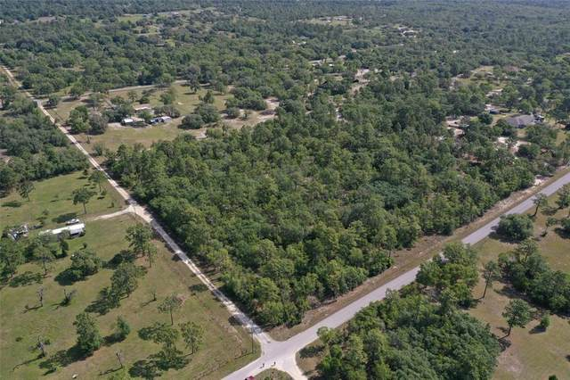 10441 N Cheyenne Avenue, Dunnellon, FL 34433 (MLS #G5041251) :: Armel Real Estate