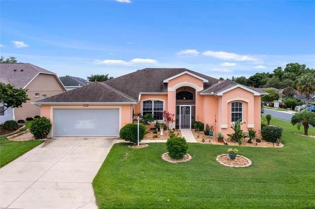 27000 Nature View Street, Leesburg, FL 34748 (MLS #G5042059) :: Armel Real Estate