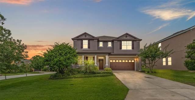 30146 Tokara Terrace, Mount Dora, FL 32757 (MLS #G5043001) :: Armel Real Estate