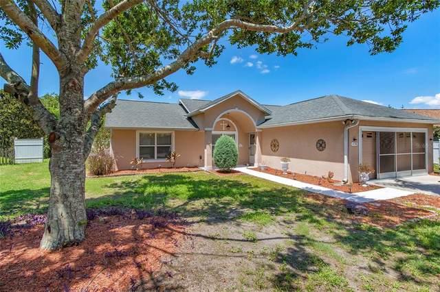 11718 Constance Way, Clermont, FL 34711 (MLS #G5043185) :: Bustamante Real Estate