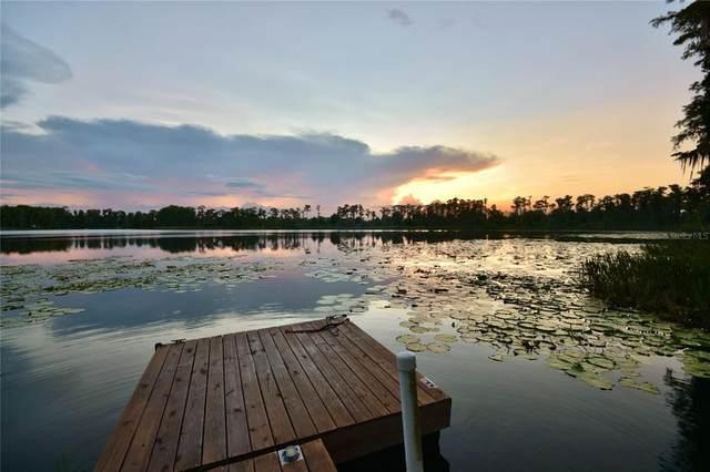16885 Arrowhead Boulevard, Winter Garden, FL 34787 (MLS #G5043221) :: Zarghami Group