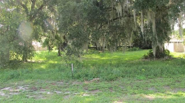 Lake Panasoffkee, FL 33538 :: Pepine Realty