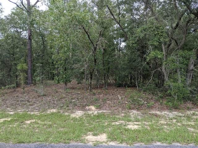 10289 N Harbor Way, Citrus Springs, FL 34434 (MLS #G5043340) :: The Hustle and Heart Group