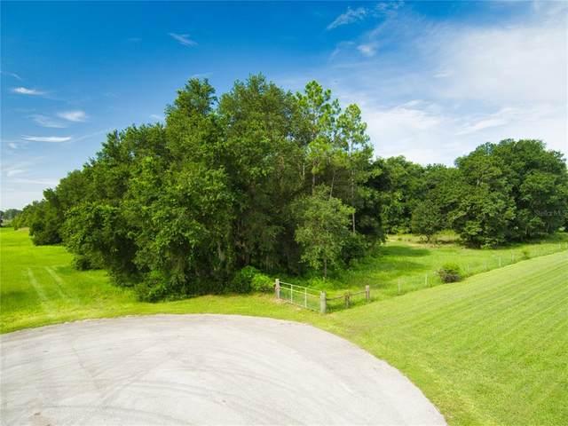 Grass Roots Road Lot 12, Groveland, FL 34736 (MLS #G5043526) :: Team Bohannon