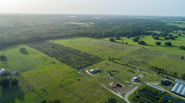 Clermont, FL 34711 :: Sarasota Property Group at NextHome Excellence
