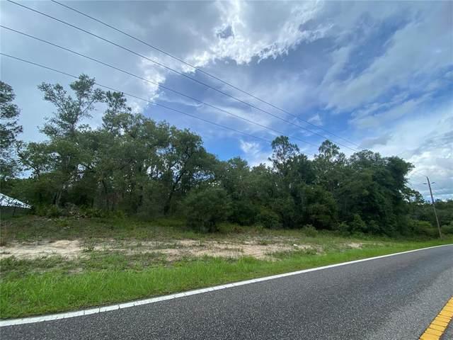 Madonna Drive, Webster, FL 33597 (MLS #G5043935) :: Zarghami Group