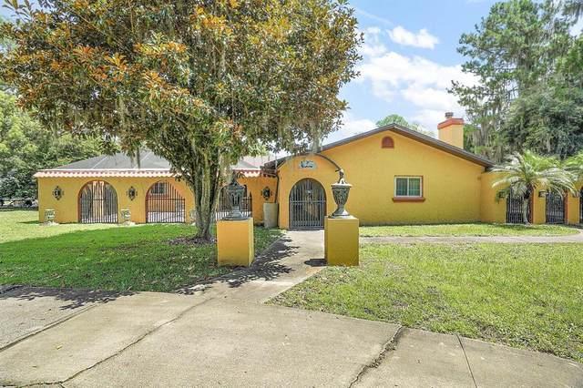 32720 Lakeshore Drive, Tavares, FL 32778 (MLS #G5044138) :: Zarghami Group