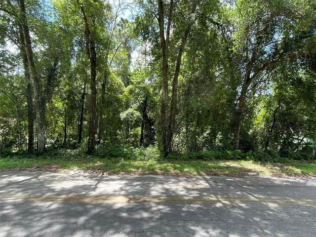 3474 S Dalton Terrace, Inverness, FL 34452 (MLS #G5045103) :: Young Real Estate