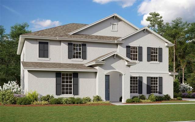 29920 W Cypress Point, Tavares, FL 32778 (MLS #G5046121) :: The Curlings Group