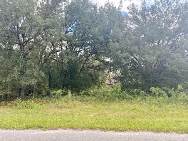 8309 N Vince Drive, Citrus Springs, FL 34434 (MLS #G5046781) :: Everlane Realty
