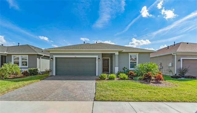 910 Tidal Pond Drive, Groveland, FL 34736 (MLS #G5047115) :: Global Properties Realty & Investments