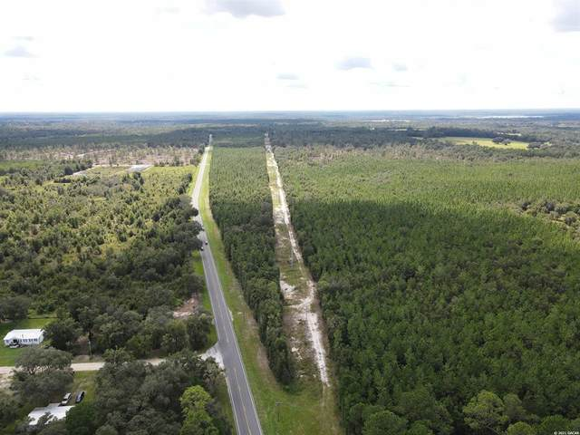 TBD State Road 21, Hawthorne, FL 32640 (MLS #GC448052) :: Gate Arty & the Group - Keller Williams Realty Smart