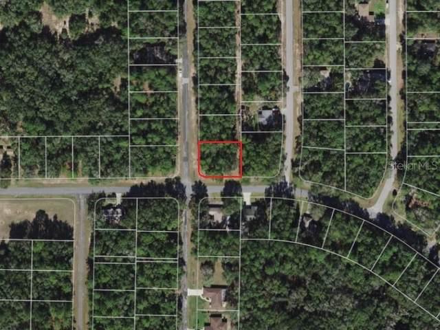 949 W Virginis Drive, Citrus Springs, FL 34434 (MLS #GC500124) :: Delgado Home Team at Keller Williams