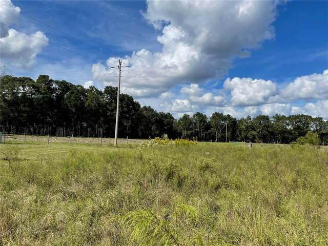 332 NW Gulliver Court, High Springs, FL 32643 (MLS #GC500129) :: Rabell Realty Group