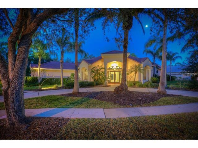 8915 Magnolia Chase Circle, Tampa, FL 33647 (MLS #H2203456) :: The Duncan Duo Team