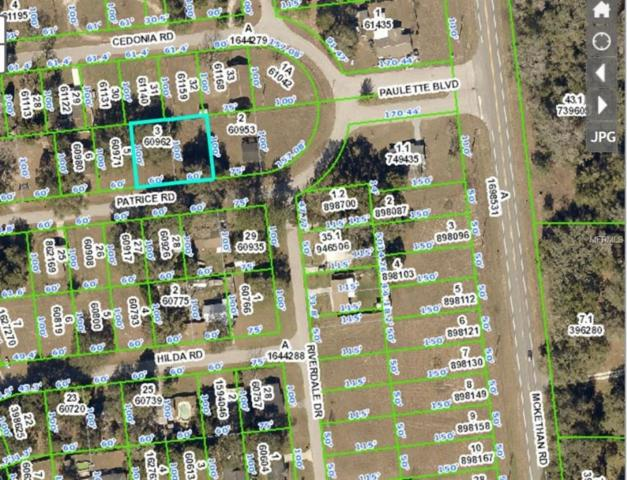 33167 Patrice Road, Dade City, FL 33523 (MLS #H2203823) :: The Duncan Duo Team