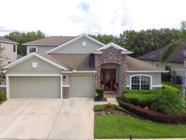15201 Azra Drive, Odessa, FL 33556 (MLS #H2203937) :: Griffin Group
