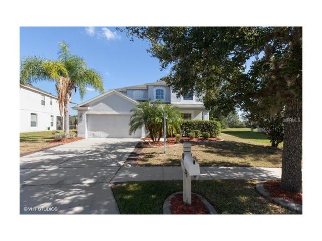 3514 Fortingale Drive, Wesley Chapel, FL 33543 (MLS #H2204302) :: Griffin Group