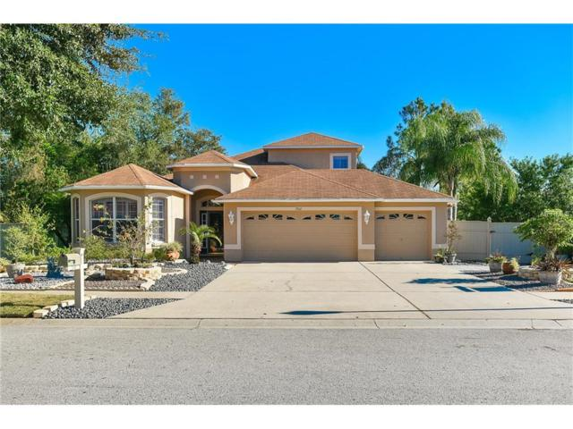7532 Blue Spring Drive, Land O Lakes, FL 34637 (MLS #H2204318) :: Team Bohannon Keller Williams, Tampa Properties